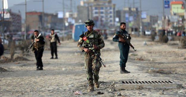 Hizo coronavirus matar al líder Talibán?