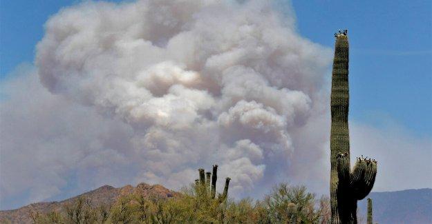 Los bomberos se enfrentan a nuevos retos, preocupaciones de la partida en incendios forestales de la temporada en medio de coronavirus pandemia