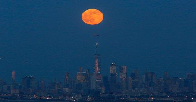 Prepárate para la fresa de la luna: de la NASA, los mejores consejos para junio de skywatchers