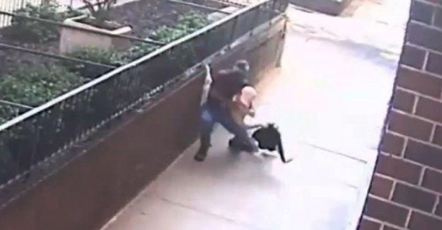 Video muestra NYC ladrón choke, rob mujer en plena luz del día