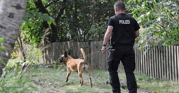 Alemania: Jardín de la búsqueda continúa en McCann investigación