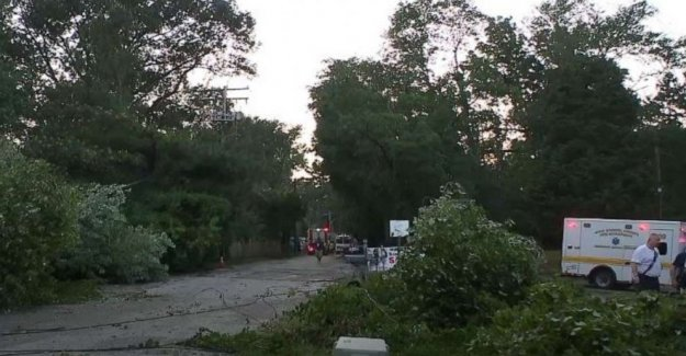 Árbol en Maryland cae en el garaje durante la tormenta, atrapando a los 19 años, incluyendo a los niños