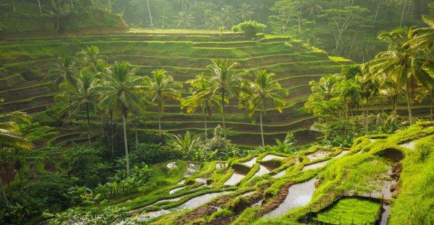 Bali hotel clasificado mejor en el mundo