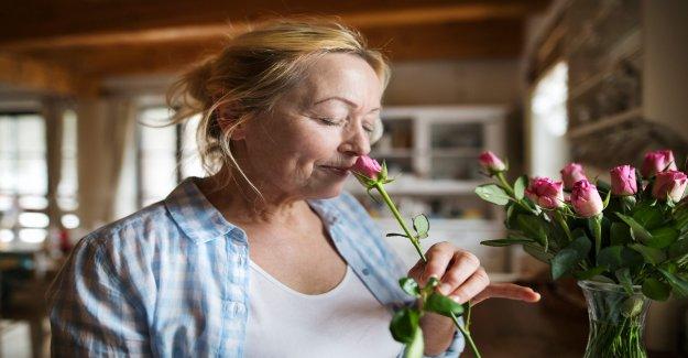 Buen sentido del olfato puede indicar un menor riesgo de demencia en los adultos mayores: estudio