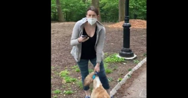 Cargo presentado contra el blanco Central Park de la persona que llama al 911
