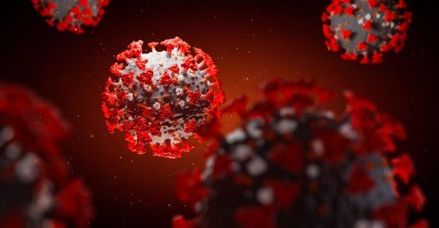 Coronavirus los casos vinculados a Michigan banco de arena, la Cuarta parte de julio