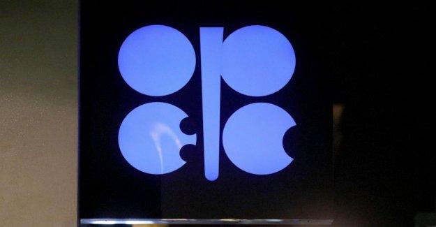 La OPEP y aliados para facilitar los cortes, permiten una mayor producción de aceite de