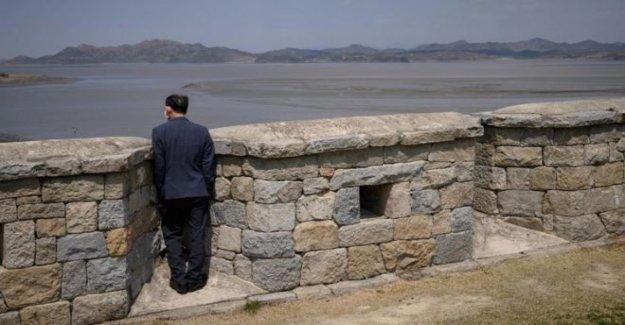 La natación desertor no tiene el virus, dice Corea del sur