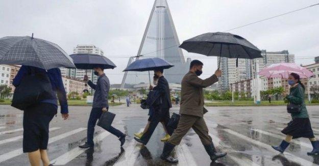 N Corea en alerta por 'primera sospecha de virus de caso