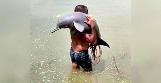 Pescador en la India accidentalmente las capturas de delfines en peligro de extinción, que lleva a la seguridad