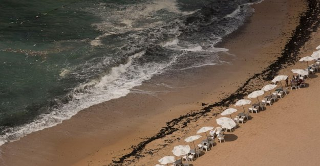 Policía: 4 miembros de la familia se ahogan en la playa en el norte de Egipto