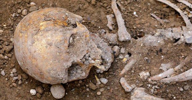 The hunt for Red Hugh: La búsqueda de un siglo 16 Irlandés cacique huesos continúa en España