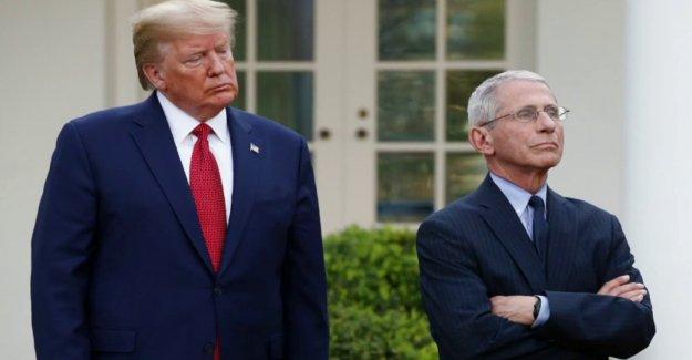 Trump dice que tiene muy buena relación con Fauci después de funcionario de la Casa Blanca critica médico