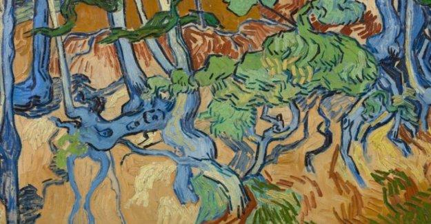 Ubicación de Van Gogh la última pintura descubierto
