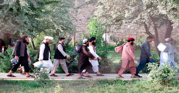 Afganistán comienza la liberación de la última Talibanes presos como acuerdo de paz sigue adelante
