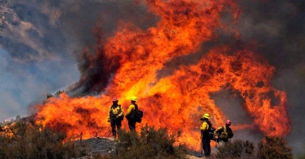 Apple Fuego en California fue provocado por malfuncionamiento del vehículo, incendio arrasa 41 millas cuadradas