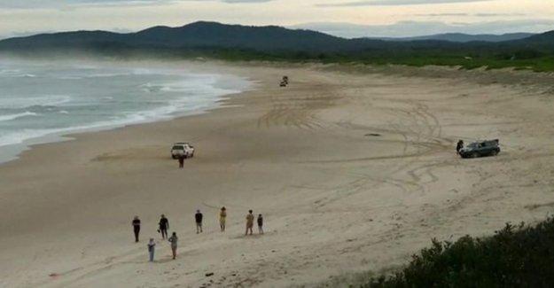 Australia surfista guarda esposa por la perforación de tiburón