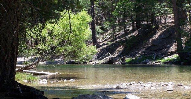 Buen Samaritano muere en California río tratando de salvar a 3 niños: informe