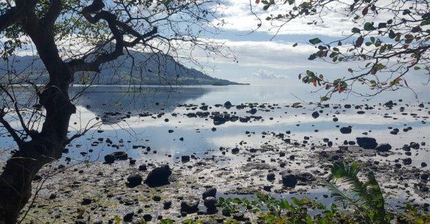 Carrera en Mauricio para vaciar la cisterna de petróleo antes de que se rompe
