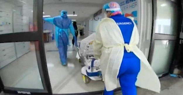Coronavirus ha infectado a más de 20 millones de personas en todo el mundo