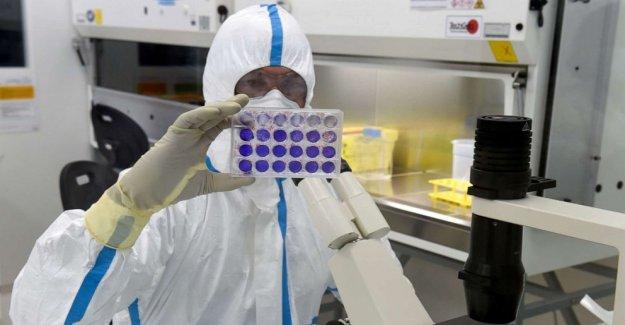 Dems desea que el panel de expertos para ACEPTAR coronavirus de la vacuna antes de su uso masivo