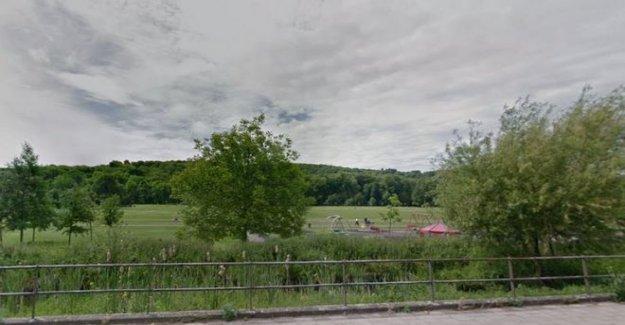 El chico, de 13 años, arrestado después de que la chica violada en el parque