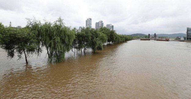 La fuerte lluvia martillos de Corea del Sur, dejando 6 muertos, 7 desaparecidos