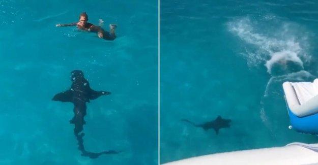 La mujer se desliza en aguas de las Bahamas como 8 pies de tiburón 'golpeado' en su