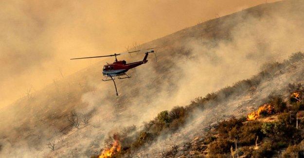 Los incendios forestales siguen amenazando en Occidente como región superó el récord de temperaturas