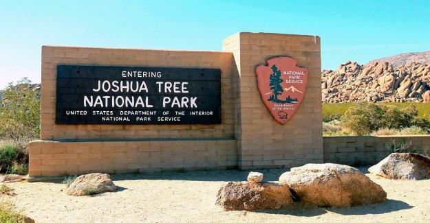 Mamá de California desaparecidas desde junio de viaje a Joshua Tree: informe
