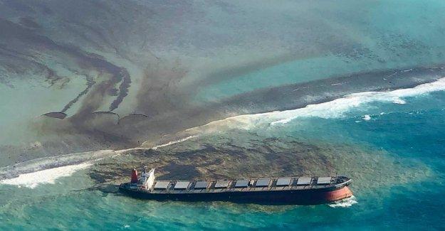 Mauricio carreras para contener el derrame de petróleo, proteger la línea de costa