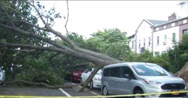 Trump declara el estado de emergencia en Connecticut, envía federales para ayudar en la Tormenta Tropical Isaias respuesta