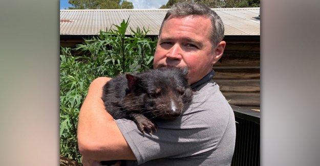 Jeff Corwin sobre el histórico regreso del diablo de Tasmania: Es 'un rayo de esperanza'