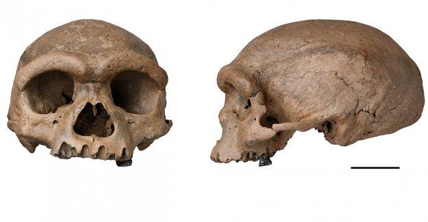'Hombre Dragón' reclamado como nueva especie humana potencial después del análisis del cráneo de China