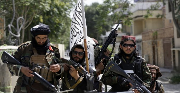 Sitios web talibanes misteriosamente se oscurecen