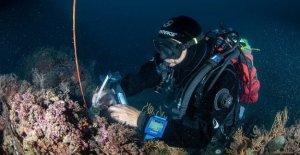 Greenpeace: el Mediterráneo se alza de 2.4 mm por año
