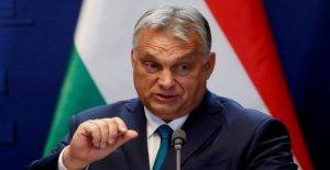 Hungría, el portavoz de Orban expulsado...