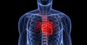 Los cardiólogos: las Válvulas del corazón sin cirugía, incluso en los jóvenes