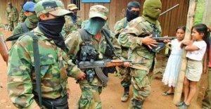Colombia-Venezuela, el control de los grupos armados en la frontera: los asesinatos, el trabajo forzado, el reclutamiento de menores de edad