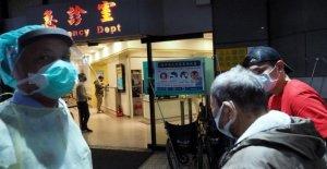 Coronavirus en China, Pekín prohibió el comercio de animales salvajes. Es un factor que agrava los estados financieros de las víctimas y los infectados