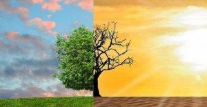 El cambio climático hace que nos enfermemos, bajo la acusación de smog y polvo fino