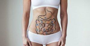 En las bacterias, el 'bueno' del intestino como un freno en el cáncer colorrectal