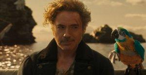 Robert Downey Jr. es el nuevo Dr. Dolittle. Y su Malibu casa es un refugio para las alpacas y las cabras