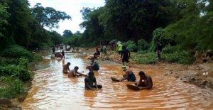 Venezuela, la lucha contra la malaria en las minas de oro de Estado de Bolívar: más de 320.000 casos