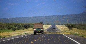La invasión de las langostas: Fao alerta sobre el peligro de hambruna en el este de África