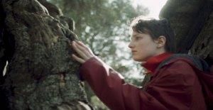 'Siembra el viento', el ambientalismo de la Berlinale. El director: La contaminación es principalmente mental