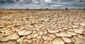 Tierra arrasada. En Ciencias, debido a que el nuevo clima es seco agricultura