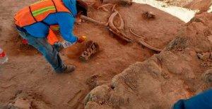 En la Ciudad de México, expertos en encontrar los huesos de decenas de mamuts