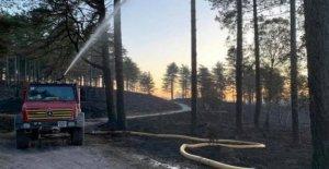 Las cuadrillas de bomberos estirado en el sitio de incendios forestales