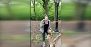 Perro blanco propietario despedido después de llamar al 911 sobre un hombre negro viral video-correa-de la ley de litigio